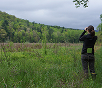 A woman on the right side of the image wearing all dark colors and tall boots stands in the middle of a bog. She holds a pair of binoculars over her face and looks out in to the forest, which rests in the back left of the image.