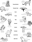 Ask A Biologist, Coloring Page, Biome Matching Game Worksheet