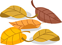 Leaves-change-color-illustration
