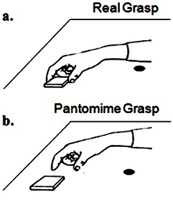 Real versus pantomimed grasp for magic trick