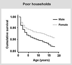 Poor households survival graph