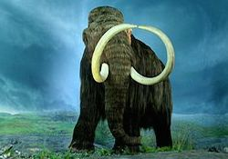 a large wooly mammoth stands in the foreground of a large field. You cannot see anything behind the creature but a blurry blue and foggy landscape. The sky looks like it might be near dusk.
