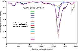 Graph showing similarity of SARS-CoV viruses found in bats