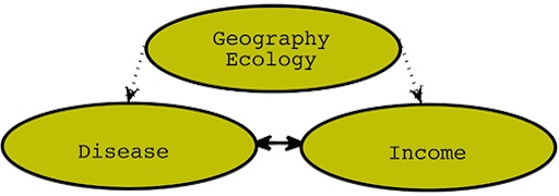 "3 circles are shown. the top circle says ""geography ecology."" Two arrows come out of this circle downward, directed at two other circles. The left circle says ""Disease"" and the right circle says ""Income."" These two circles have a double-sided arrow between them."