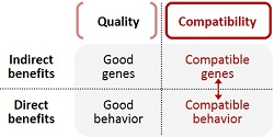 Quality vs. compatibility table