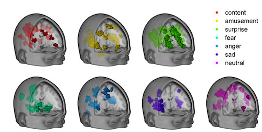 Seven computer-generated images of a head with the brain visible. Each image represents brain activation for a given emotion.