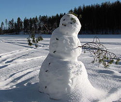 a snowman rests in a snowy field. In the background the field is covered in snow, and evergreen trees line the horizon.