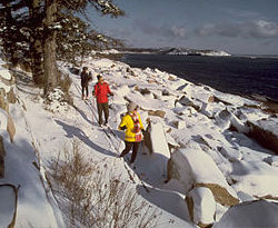 a family walks along a snowy path. The path they walk on sits very close to a large body of water.