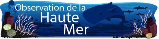 Observation de la Haute Mer