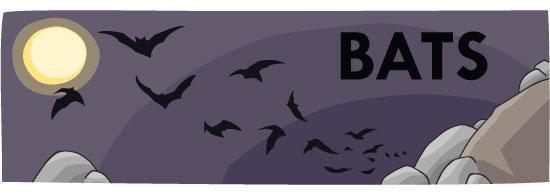 bat header sm 0