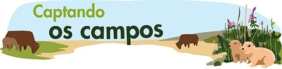 Grasping Grasslands in Portuguese