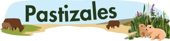 Animales Del Pastizal Ask A Biologist