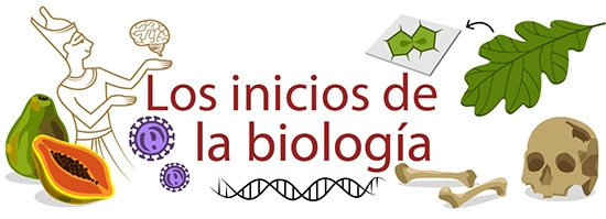 Los inicios de la biologia