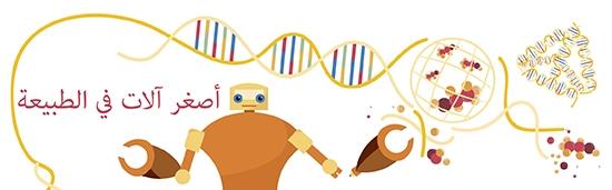 Nanobiotechnology Arabic