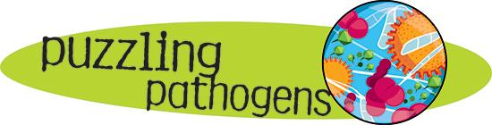 Bacteria, Fungi, Viruses