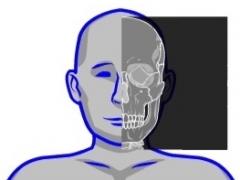 Human skeleton game