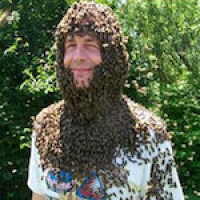 Smith with bee beard