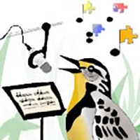 Birds and their Songs