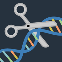Gene Editing illustration showing scissors cutting DNA