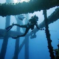 Molly Cummings SCUBA diving