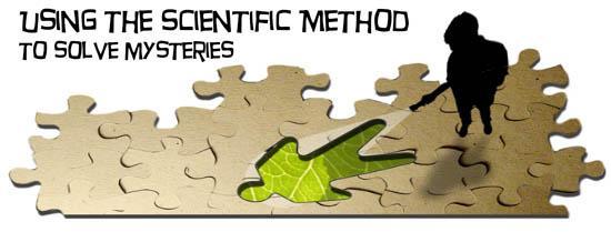 graphic about Printable Scientific Method Quiz called Medical Process quiz Inquire A Biologist