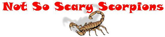 Not so scary scorpions