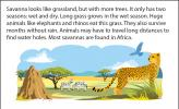 Illustration of the savanna, with a termite mound, zebras, and a cheetah.