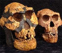 antik kafatasları