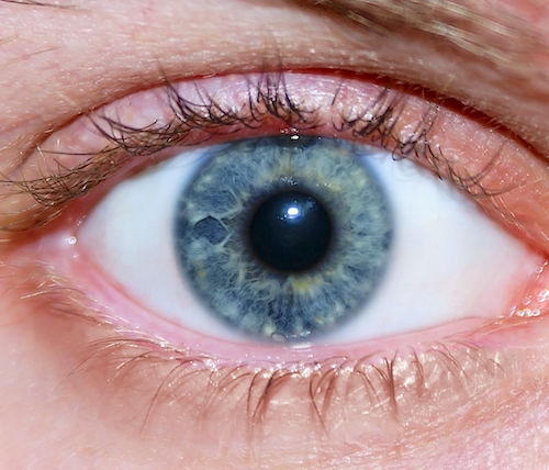 Close up of a blue eye