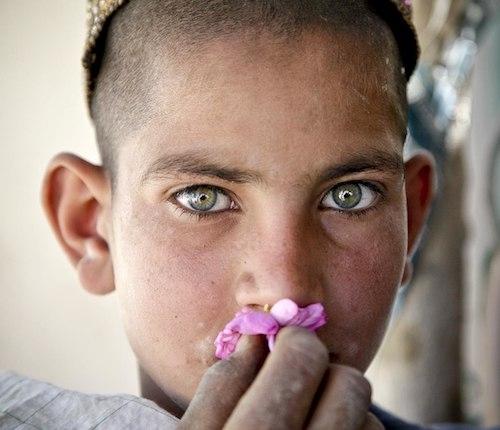 Un garçon sentant une fleur