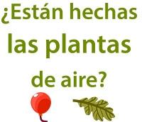 La masa de las plantas esta de aire