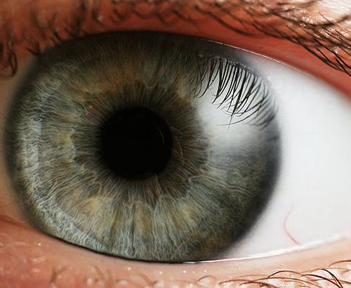 göz irisi