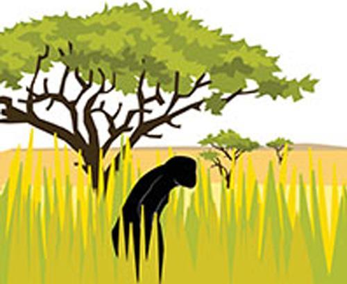 Human ancestors and climate