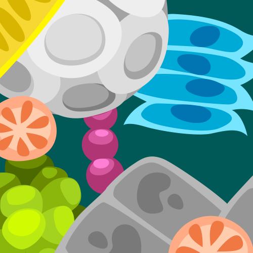 Microorganism Activity