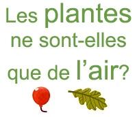 les plantes ne sont-elles que de l'air?