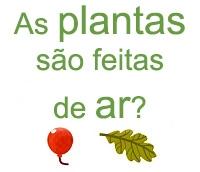 as plantas sao feitas de ar?