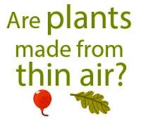 plants-thin-air