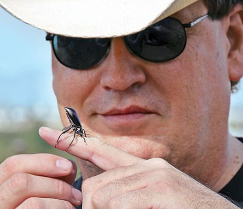 Quentin Wheeler looking at a beetle
