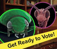 They're Back! It's time to review this year's Ugly Bug contestants and vote for your favorite insect.