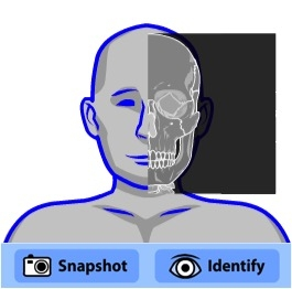 skeleton viewer