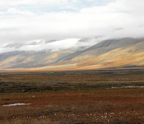 sloping tundra