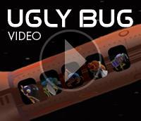 Ugly Bug Video Link