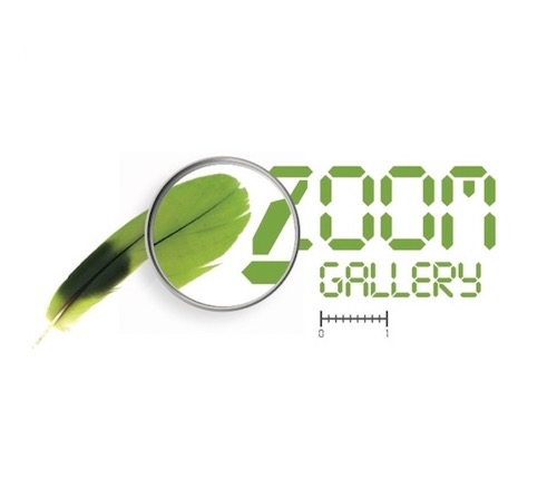 Zoom gallery feathers