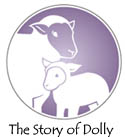 the  story of dolly